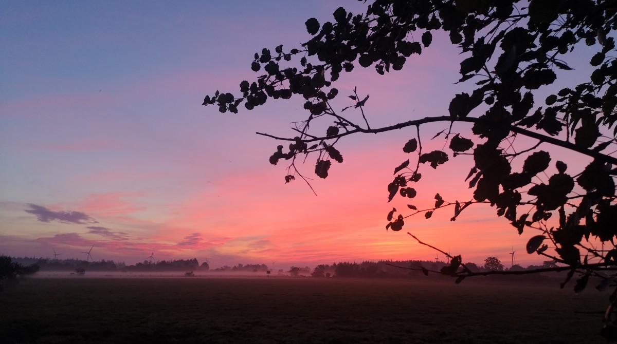 North Frisian sunrise